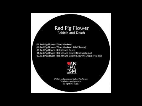 Red Pig Flower Weird Weekend Youtube
