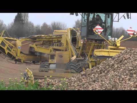 Zuckerrüben Ernte in Großraum Würzburg Abtransport zu Südzucker nach Ochsenfurt 2015 Teil 4/6