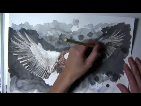 how to paint a detailed flying eagle with watercolor and sumi ink