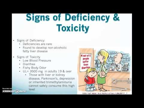 Choline & Pantothenic Acid