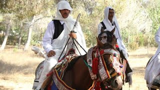 En Libye, les fantasias perpétuent culture et tradition thumbnail