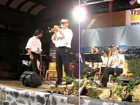 Burgenländer bringen Blasmusik - Blech & Brass Banda - Malaguena