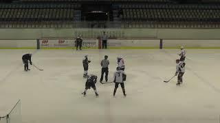 Хоккей ЛНХЛ Ударник-Ястребы 26.12.2017 г. 3 пер. Пермь