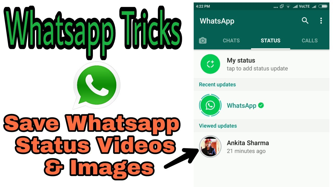 110 Best WhatsApp Status