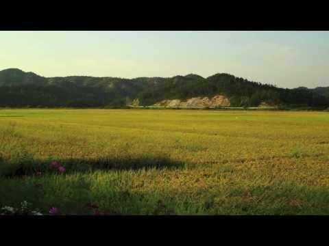 Riding in Korea 1080 Kian Tadrissi