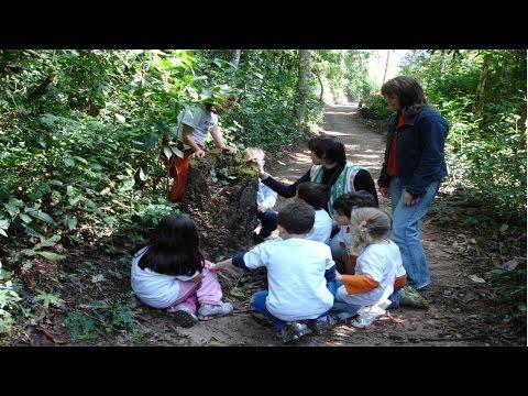 Curso Educação Ambiental Infantil