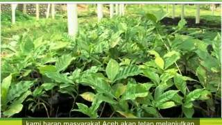 Tsunami Livelihood Recovery in ACEH 2005-2010