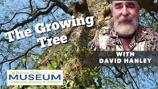 The Growing Tree with Dave Hanley