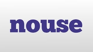 nouse meaning and pronunciation
