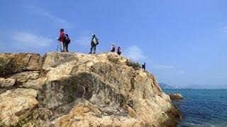 坪洲環島一天遊