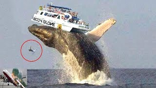 10 Most Shocking Accidents  Live Most  Amazing Videos Of The World !!!