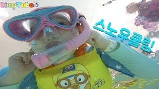 [라임의 도전 스노우쿨링!]이천 미란다 호텔 소피루비 헬로카봇 캐릭터룸이 있는 가족여행에 좋은 스파 수영장 LimeTube & Toy 라임튜브