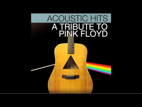 """Pink Floyd """"Hey You"""" Acoustic Hits Cover Full Song"""