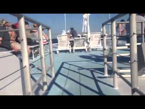 Double Eagle Fishing Charter Clearwater Florida