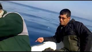 arsuz konacık tekneden balık avı