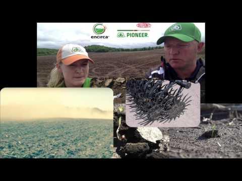 Pioneer GP Agronomy Minute - Managing Soil Crusting