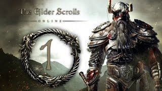 THE ELDER SCROLLS ONLINE #001 [BETA] [Deutsch] [HD+] - In Gefangenschaft // Let's Play