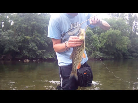 Pêche à la mouche en compétition from YouTube · High Definition · Duration:  6 minutes 52 seconds  · 9.000+ views · uploaded on 26.07.2014 · uploaded by Yannick moniteur guide de pêche