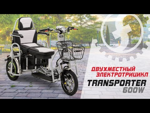 Двухместный электротрицикл для пожилых Transporter