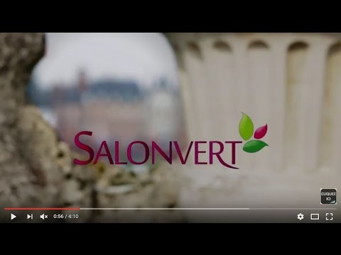 Salonvert_Le film