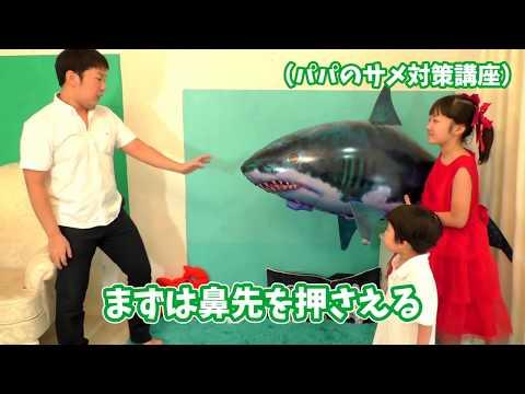 ★海の生物ごっこ!「巨大サメラジコン~!」★Huge Shark Radio Control★