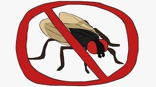 bugs-should-go-extinct