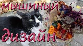 КОШКИ МЫШКИ или МЫШИНЫЙ ДИЗАЙН Приколы с котами и другими животными Кошки Приколистки Funny Cats