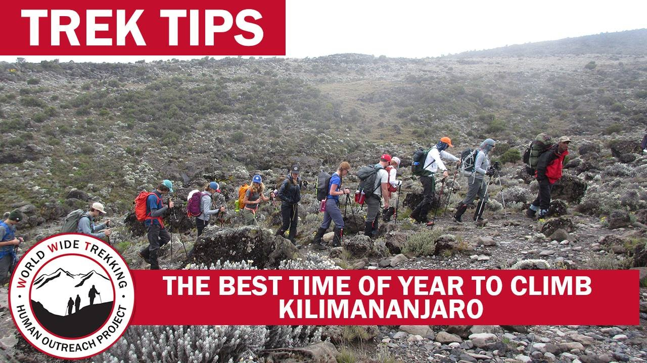 The Best Time Of Year To Climb Kilimanjaro Trek Tips