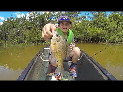 Sunfish Research In Oklahoma