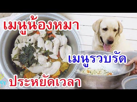 เมนูน้องหมา อาหารหมาทำเอง อาหารสุนัขปรุงเอง สูตรอาหารหมา สูตรอาหารสุนัข homemade dog foods recipes