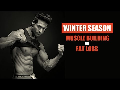 Should You Gain Muscle Or Lose Fat In WINTER Season?