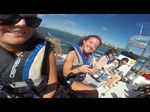 (Travel Video) - New Year's in HAWAII 2016