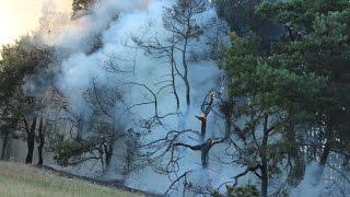Pożar lasu na Dybance - 14 sierpnia 2015