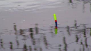 Ловля плотвы на поплавок в апреле