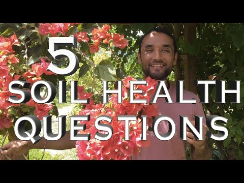 5 soil health questions I bet you don't know the answers to 🤓