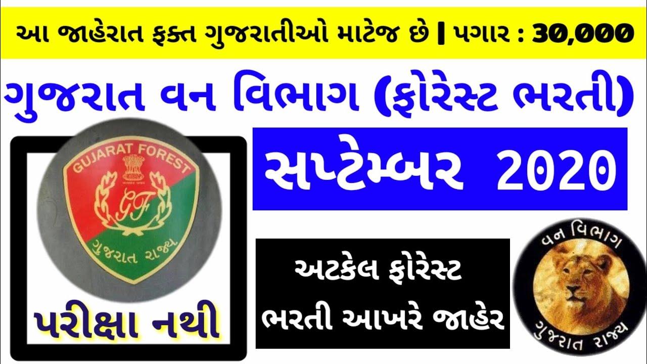 forest bharti 2020-21 gujarat | forest guard bharti gujarat | new gujarat government jobs 2020-21