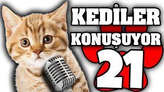 Konuşan Kediler #21 - En Komik Kedi ları