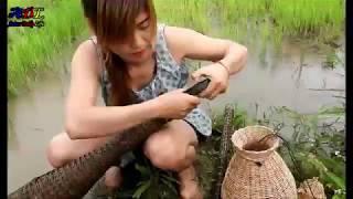 Beautiful Girl Fishing - Amazing Fishing at Battambang - How To Catch Fish By Hand #2