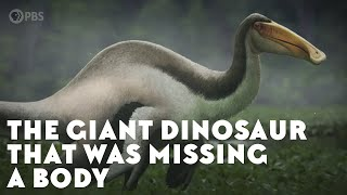 The Giant Dinosaur That Was Missing a Body