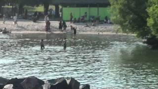 Centre Island Part 3- Beach - Musharraf