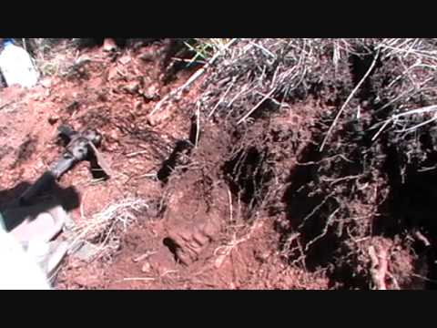 Finding Colorado Fluorite