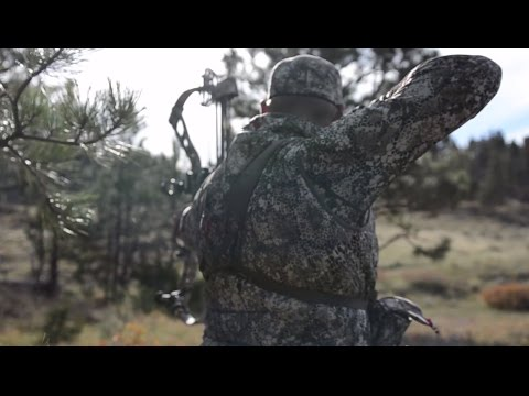 The Bison: A Bowhunting Adventure