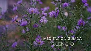 SILENCIO: Meditacion Guiada de 5 Minutos | A.G.A.P.E. Wellness