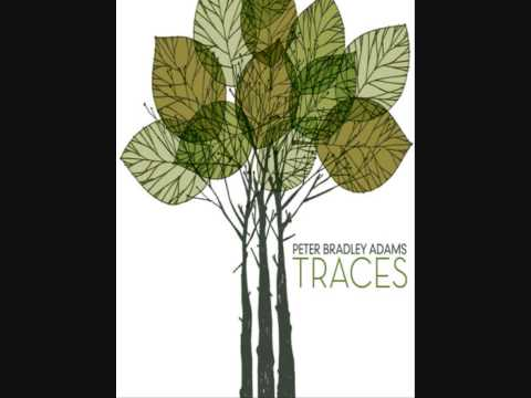 Bradley Adams   Darkening Sky