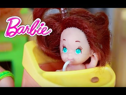 Barbie Toby Plays Inside At KidKraft Dollhouse