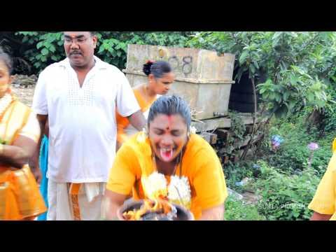 SRI MAHA MARIAMMAN DEVASTHANAM ALMA BUKIT MERTAJAM  FIRE WALKING CEREMONY 2013