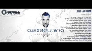 03. Alex Gaudino Feat. Jordin Sparks - Is This Love (Radio Edit)