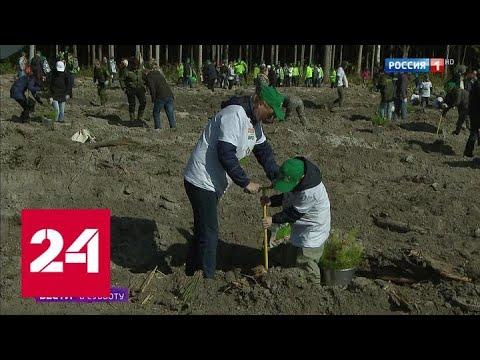 В Парке Горького прошел экофестиваль - Россия 24