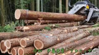 木材プロセッサー 枝打ちと玉切りまでしてしまう。