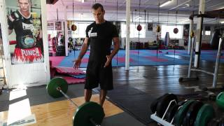 2 garage gym bumper plates the best for crossfit and olympic weight